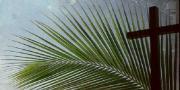 Danas je Cvjetnica, Nedjelja Muke Gospodnje i početak Velikoga tjedna