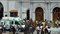 Šri Lanka: 'Bespoštedno kazniti odgovorne, jer se samo životinje tako mogu ponašati'