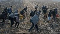 Policija zaustavila migrante, zatvoren GP Velika Kladuša - Maljevac