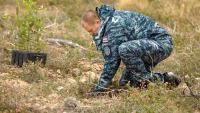 Pripadnici Hrvatske ratne mornarice sudjelovali u akciji pošumljavanja